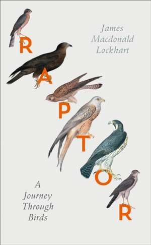Raptor de James Macdonald Lockhart