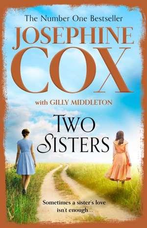 Two Sisters de Josephine Cox