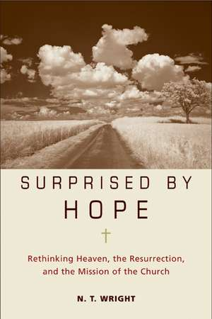 Surprised by Hope: Rethinking Heaven, the Resurrection, and the Mission of the Church de N. T. Wright