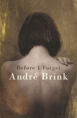 Brink, A: Before I Forget de Andre Brink