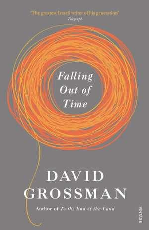 Falling Out of Time de David Grossman