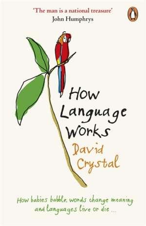 How Language Works imagine