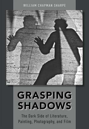Grasping Shadows