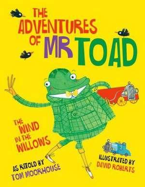 The Adventures of Mr Toad de David Roberts