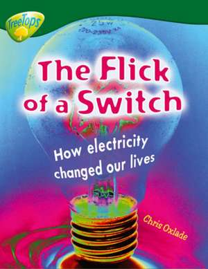 Oxford Reading Tree: Level 12: Treetops Non-Fiction: The Flick of the Switch