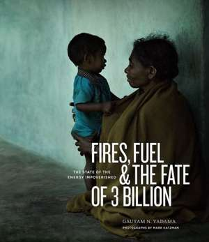 Fires, Fuel, and the Fate of 3 Billion: The State of the Energy Impoverished de Gautam N. Yadama
