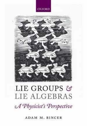 Lie Groups and Lie Algebras - A Physicist's Perspective imagine