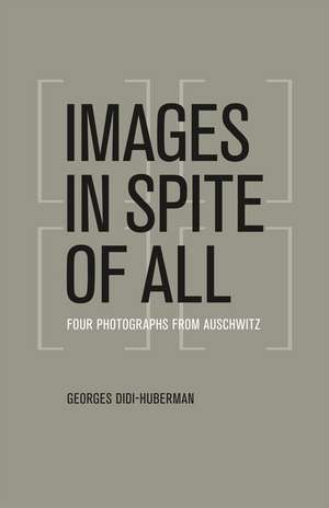 Images in Spite of All – Four Photographs from Auschwitz de Georges Didi–huberman