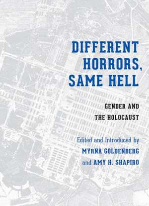 Different Horrors / Same Hell imagine