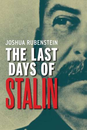 The Last Days of Stalin de Joshua Rubenstein