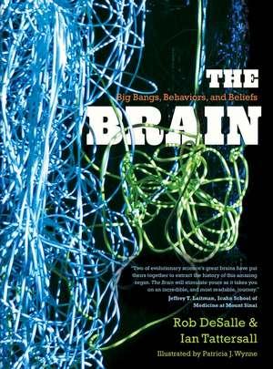 The Brain: Big Bangs, Behaviors, and Beliefs de Rob DeSalle