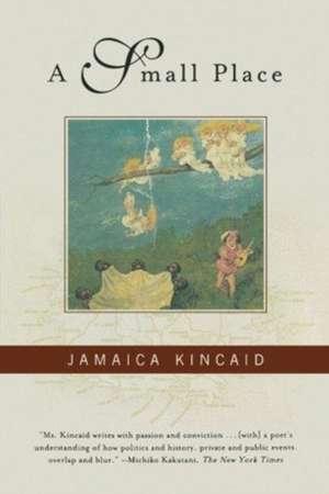 A Small Place de Jamaica Kincaid