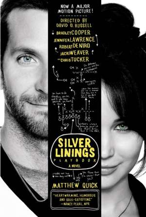The Silver Linings Playbook imagine