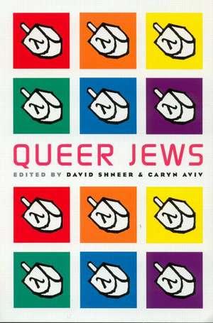Queer Jews de David Shneer