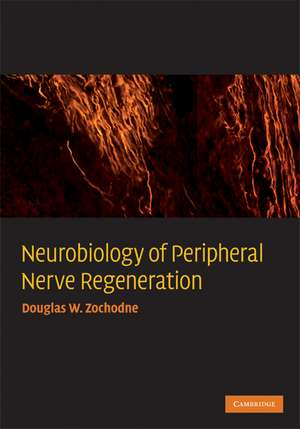Neurobiology of Peripheral Nerve Regeneration
