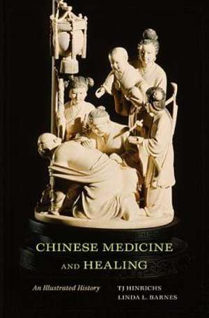 Chinese Medicine and Healing – An Illustrated History de Tj Hinrichs