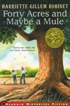 Forty Acres and Maybe a Mule de Harriette Gillem Robinet