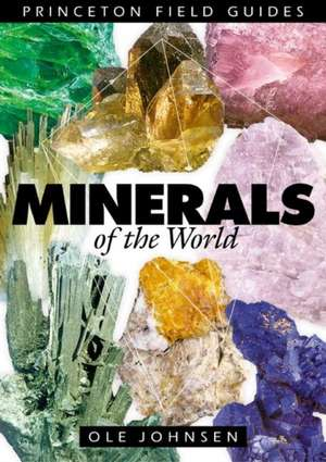 Minerals of the World de O Johnsen