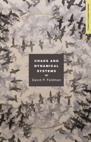 Chaos and Dynamical Systems de David Feldman