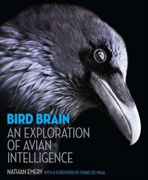 Bird Brain – An Exploration of Avian Intelligence de Nathan Emery