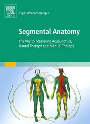 Segmental Anatomy