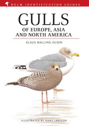 Gulls of Europe, Asia and North America de Hans Larsson