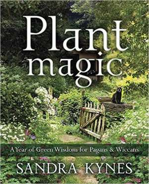 Plant Magic: A Year of Green Wisdom for Pagans & Wiccans de Sandra Kynes
