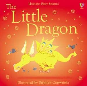 Little Dragon de Heather Amery