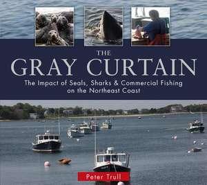 The Gray Curtain imagine