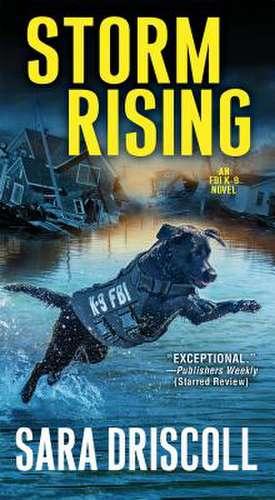Storm Rising de Sara Driscoll