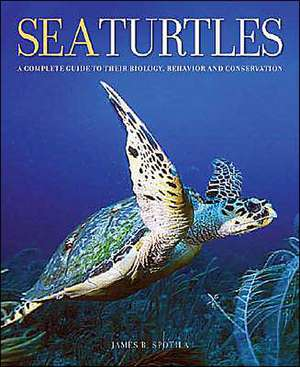 Sea Turtles – A Complete Guide to Their Biology, Behavior and Conservation
