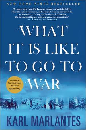 What It Is Like to Go to War de Karl Marlantes