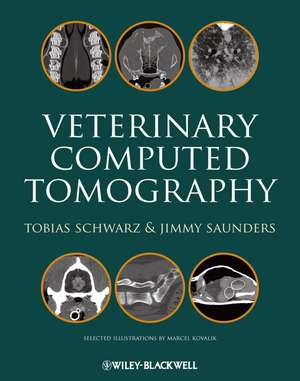 Veterinary Computed Tomography imagine