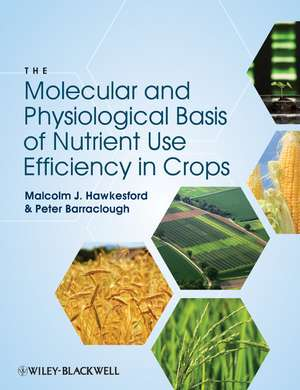 The Molecular and Physiological Basis of Nutrient Use Efficiency in Crops imagine