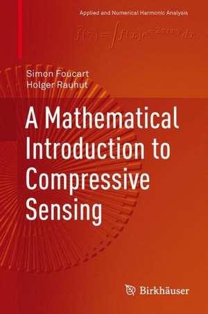 A Mathematical Introduction to Compressive Sensing de Simon Foucart