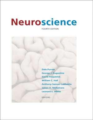 Neuroscience imagine