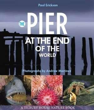 The Pier at the End of the World de Paul Erickson
