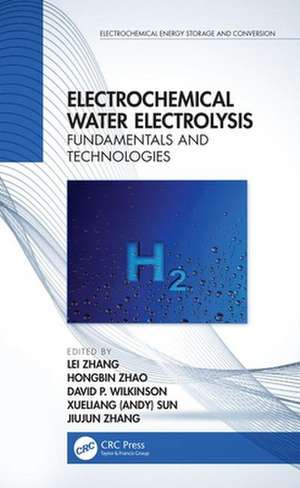 Electrochemical Water Electrolysis