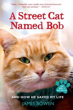A Street Cat Named Bob and How He Saved My Life de James Bowen