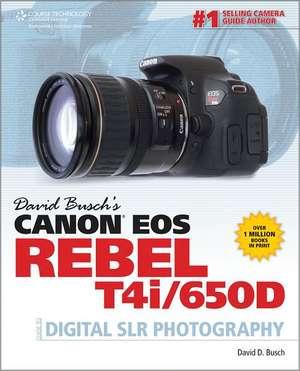 David Busch's Canon EOS Rebel T4i/650D Guide to Digital SLR Photography de David Busch