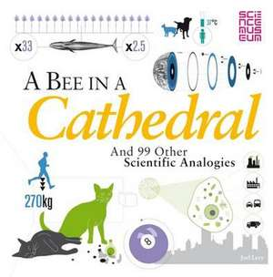 A Bee in a Cathedral imagine