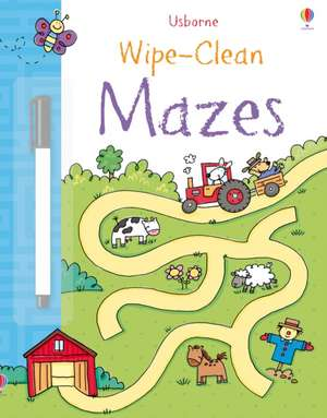 Wipe-clean Mazes de JESSICA GREENWELL