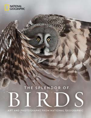 The Splendor of Birds imagine