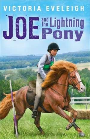 Joe and the Lightning Pony de Victoria Eveleigh