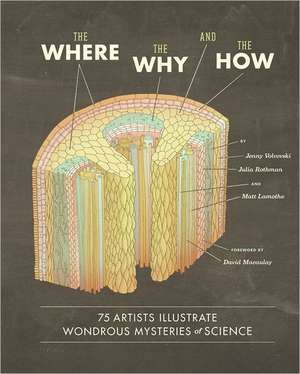 The Where, the Why, and the How de Matt Lamothe