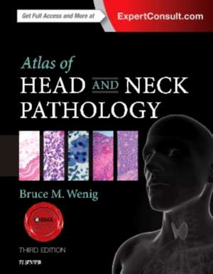 Atlas of Head and Neck Pathology pdf
