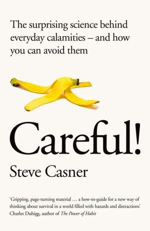 Risk de Steve Casner