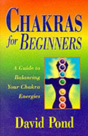 Chakras for Beginners imagine