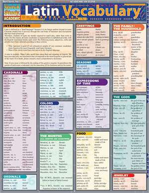 Latin Vocabulary Laminate Reference Chart