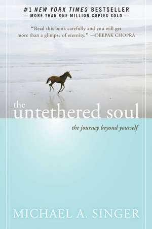 The Untethered Soul:  The Journey Beyond Yourself de Michael A. Singer